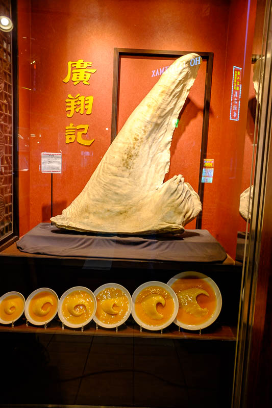 Japan-Yokohama-Food-China Town-Mapo Tofu - I felt like shark fin soup, but it was too expensive. That however is the biggest shark fin I ever saw. Japan has shark fin soup, ivory, whale meat, l