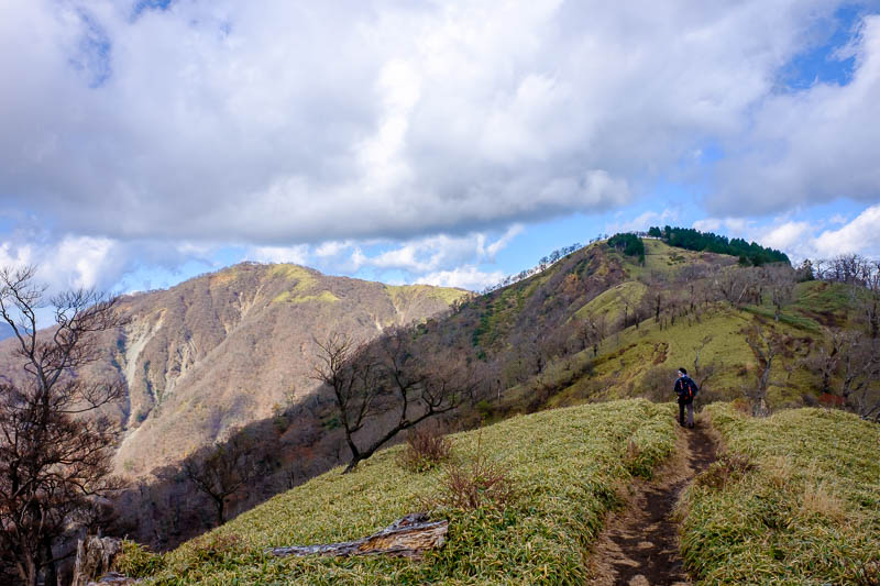 Japan-Hiking-Mount Tanzawa-Shibusawa - I had to head around to that peak on the left. The sea of little bamboo starts.