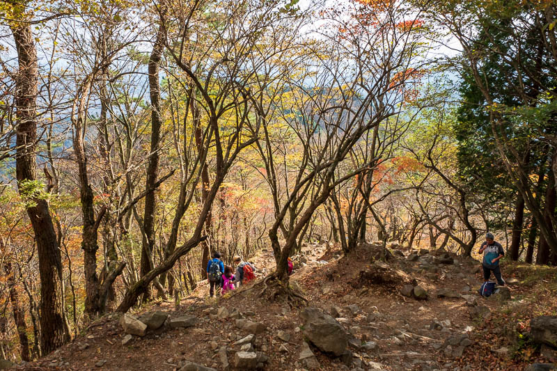 Japan-Hiking-Mount Tanzawa-Shibusawa - A bit more color on the way down.