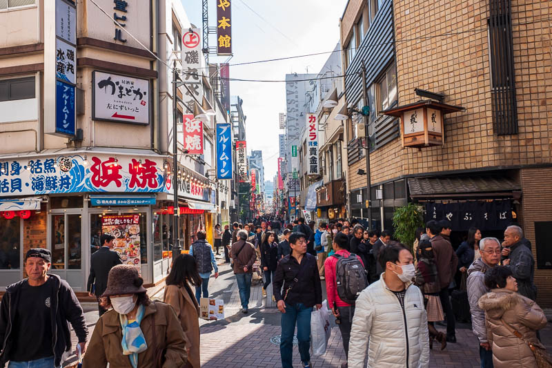 Japan-Yokohama-Tokyo-Cat-Akihabara - Now I am in colorful Ueno, its very busy. Most lunch places have huge lines.