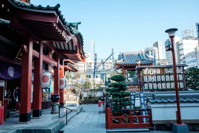 Japan-Yokohama-Tokyo-Cat-Akihabara - I had to flee back to Ueno, where I found this temple hidden in the streets with a view of the passing trains to reflect on what I had seen.