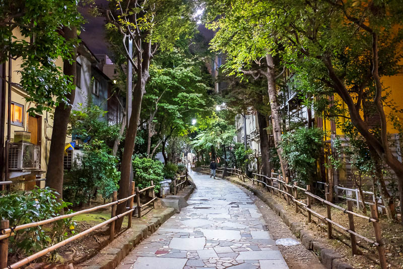 Japan-Tokyo-Shinjuku-Golden Gai-Ramen - In the back streets of Kabukicho there is this walkway through an urban forest.