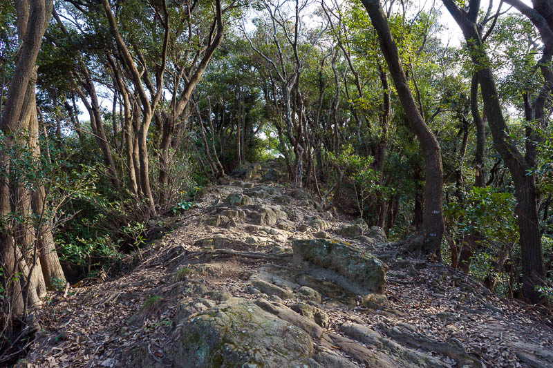 Japan-Chiba-Hiking-Mount Nokogiri - Time to get climbing. I had meticulously planned a path to take me up a remote way to the top of Mount Nokogiri. It did not go to plan and I got lost