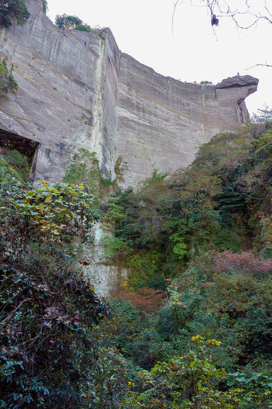 Japan-Chiba-Hiking-Mount Nokogiri - This whole place used to be a quarry, right up until 1980. I dont understand how they cut the huge cubes of stone out of the cliff face using just a h