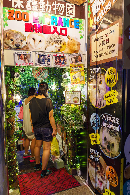 Japan-Okinawa-Naha-Food - An underground zoo. They have the usual things like owls and hedgehogs for you to torture, but they also claim to have an otter? Otters have terrifyin