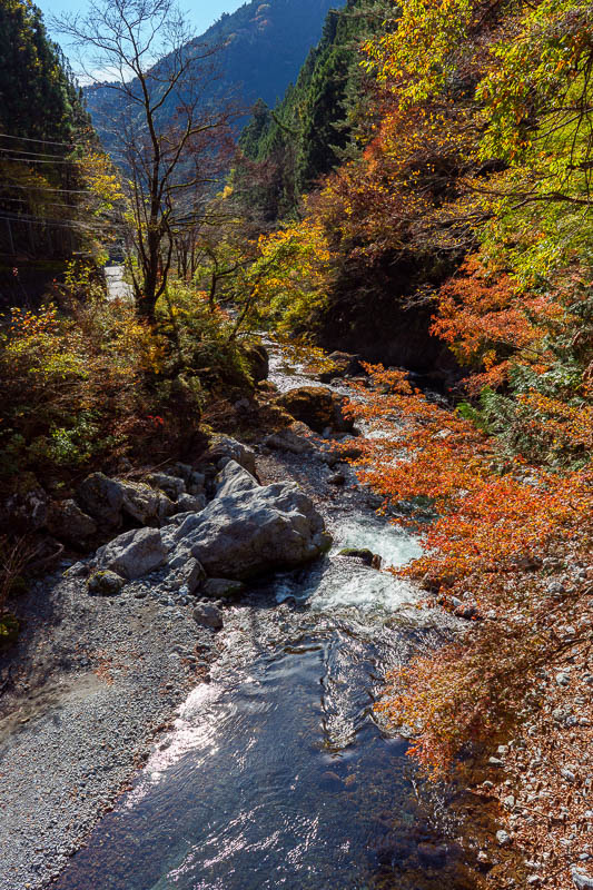 Japan-Tokyo-Hiking-Mount Kawanori - It was just that colorful. And bright. Check out the bright sun reflecting off the water.