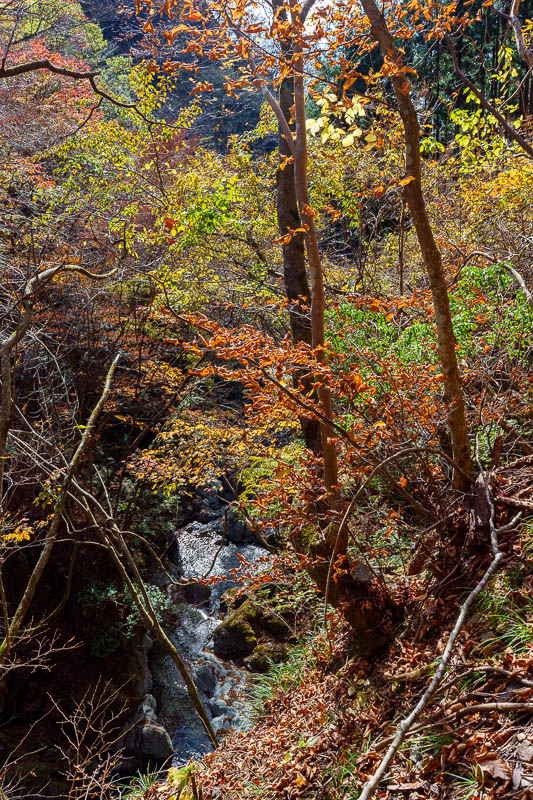 Japan-Tokyo-Hiking-Mount Kawanori - More color, more water, more view.