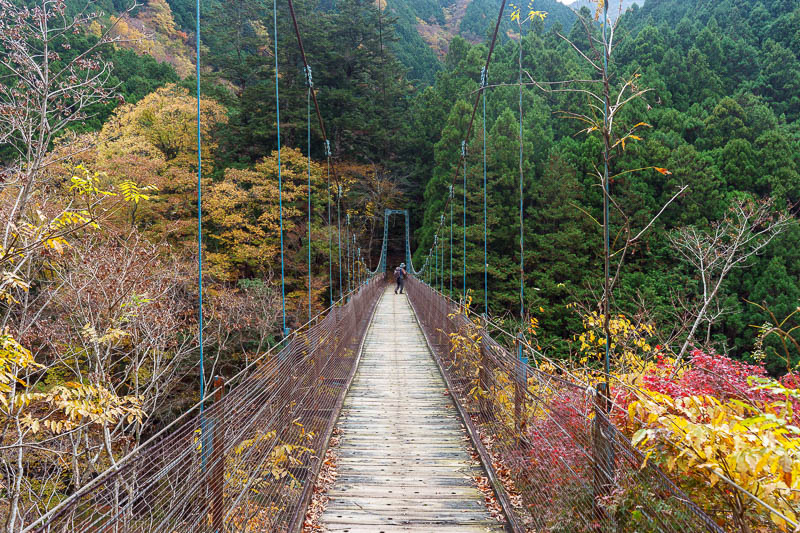 Japan-Okutama-Lake-Hiking - There are a couple of old bridges to climb over and take photos from. They move around a lot, and no more than 5 people at a time are allowed on the b