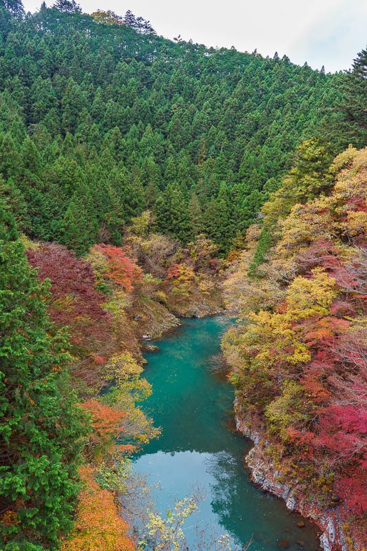 Japan-Okutama-Lake-Hiking - View from bridge the other way. Check out the color of the water, someone dropped a box of pens into it to make it that color.