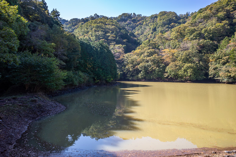 Japan-Tokyo-Hiking-Mount Kuratake - The hike starts at a swamp that is apparently a pristine reservoir full of mountain water. I wont be partaking of a drink.