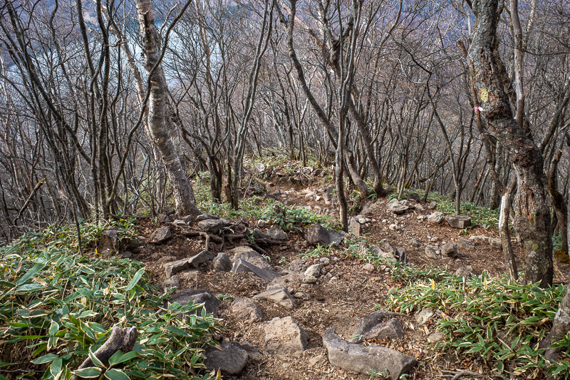 Japan-Hiking-Mount Akagi - It does not look that steep, but it was really very steep.