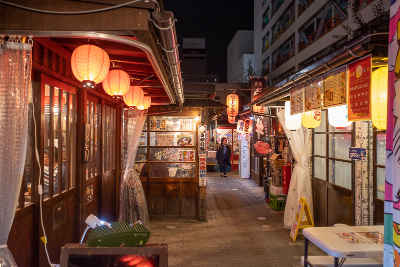Japan-Yamagata-Nanukamachi-Ramen - There is a warehouse complex converted into little alleyways of restaurants.