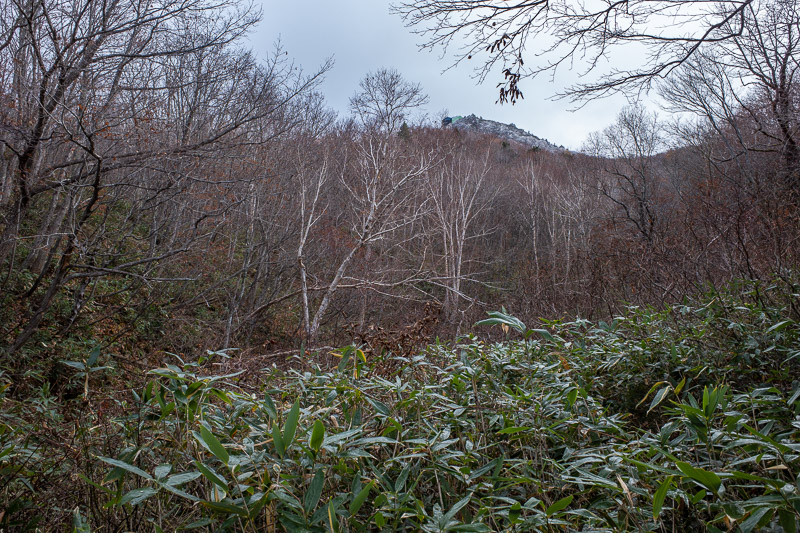 Japan-Yamagata-Hiking-Mount Zao - If you squint you can see an ice covered peak with a ropeway station. Thats a different mountain though.