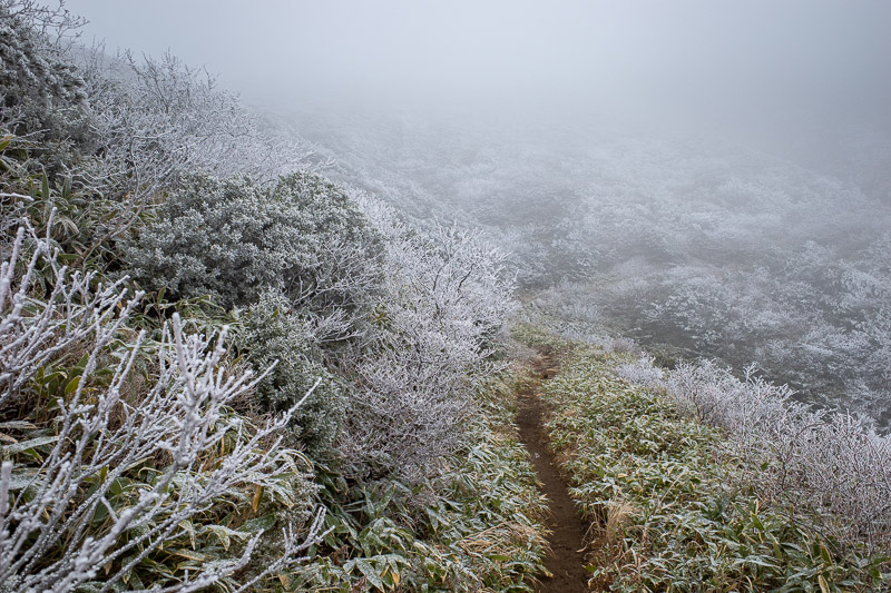 Japan-Yamagata-Hiking-Mount Zao - Getting quite icy, but you can still see the path is dirt at this point.