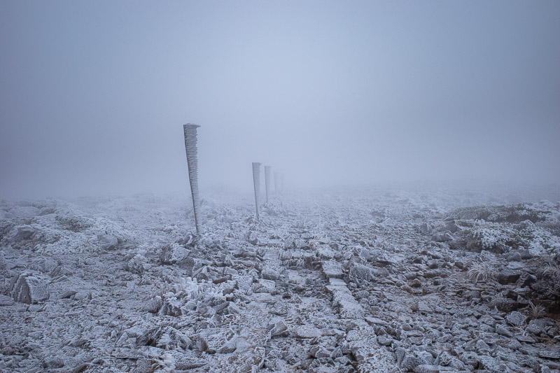 Japan-Yamagata-Hiking-Mount Zao - The poles were very useful in near white out conditions.