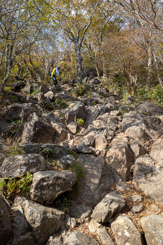 Japan-Tokyo-Hiking-Mount Tsukuba - The short path up to the top of man mountain was not long, in fact it was short as I just said, but still had some technical sections like this to scr