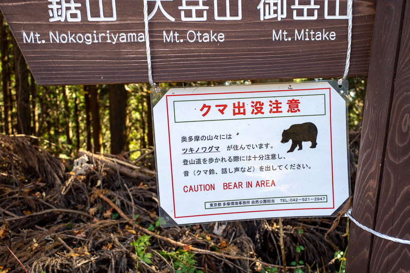Japan-Hiking-Okutama-Mount Gozenyama - OMG!
