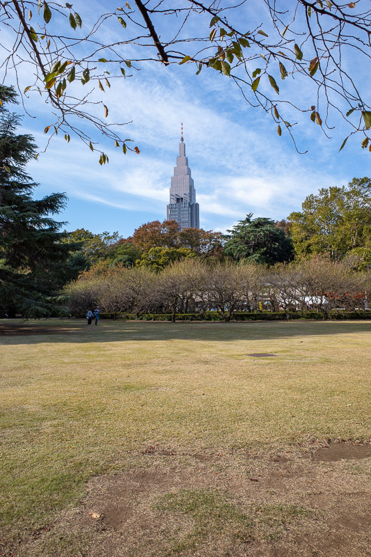 Japan-Tokyo-Shinjuku Gyoen-Garden - The light and weather was amazing today, perfect for garden photos, so I took a lot of them. Most of them will feature the massive GOTHAMIC DoCoMo tow