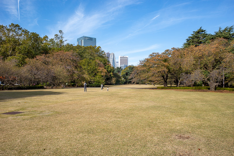 Japan-Tokyo-Shinjuku Gyoen-Garden - Lots of wide open spaces, it looks mostly like there were hardly any people, but thats because wherever I go, people flee in terror.