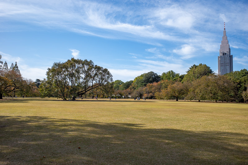 Japan-Tokyo-Shinjuku Gyoen-Garden - More open space and Batman land building.