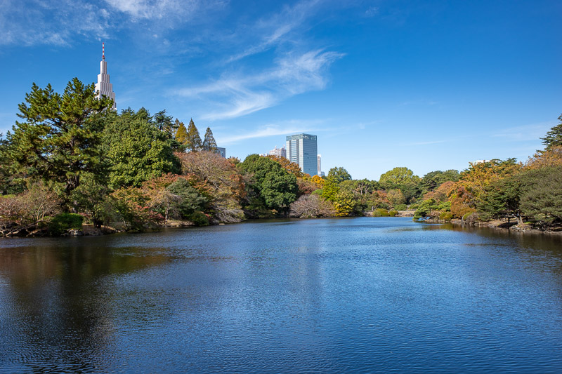 Japan-Tokyo-Shinjuku Gyoen-Garden - The other way. So much more colorful than when I came here on a grey day in March.
