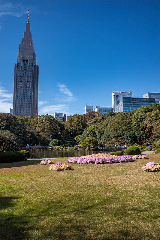 Japan-Tokyo-Shinjuku Gyoen-Garden - Last one. The flowers in the lawn on this photo are very bright, and confuse the white balance on my camera.