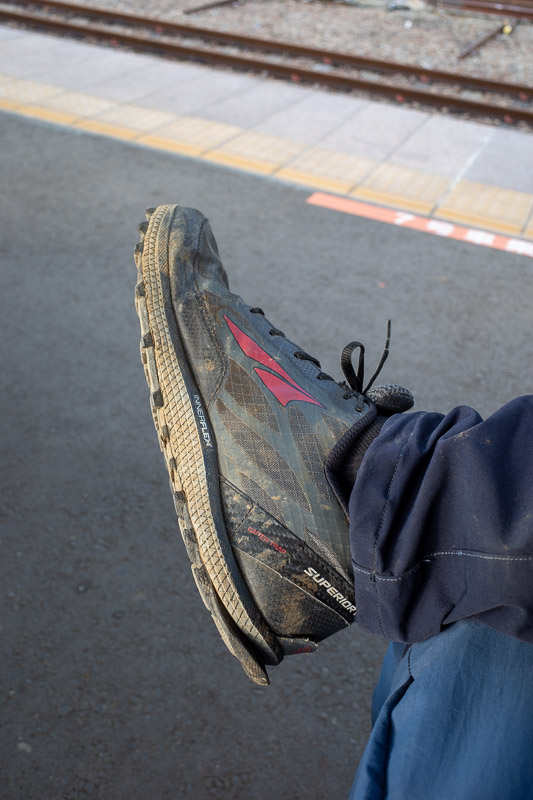 Japan-Hiking-Mount Sekirozan-Lake Sagami - Behold my shoes, purchased new for this trip. They have survived the trip. Altra Superior 3.5, designed for people with very wide feet. No toe blow ou