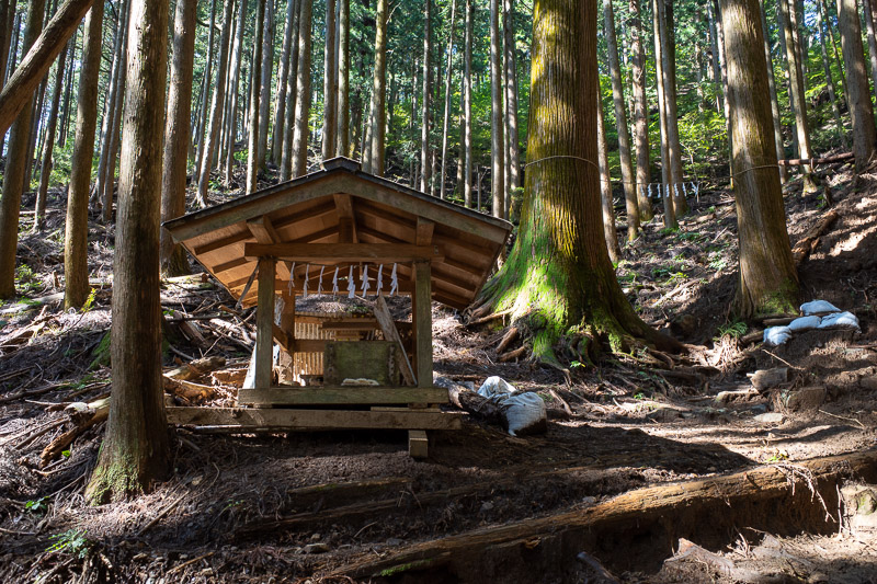 Japan-Tokyo-Hiking-Iwatakeishiyama - There are a number of shrines and mini shrines on this hike as you shall see.