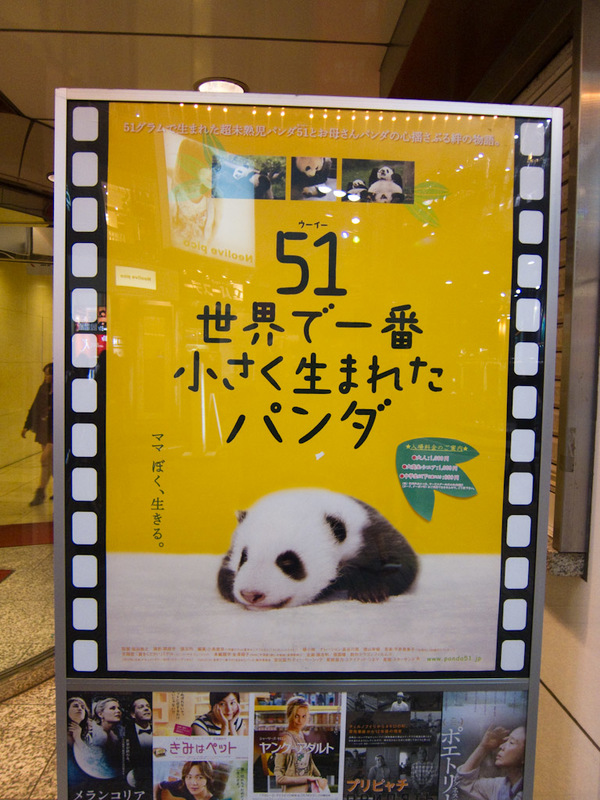 Japan-Tokyo-Shinjuku-Neon - This is a movie poster, there appears to be a movie coming starring baby pandas. Perhaps 51 of them. I couldnt find details on imdb.