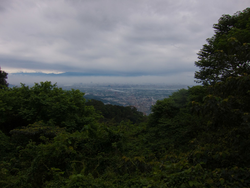 Taiwan-Taipei-Hiking-Yangmingshan - I guess I am about half way up. The forest was very thick and there werent many spots where you could see to take a photo. Which was a bit concerning