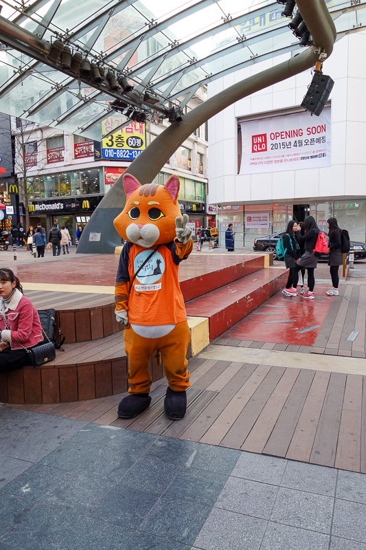 Korea-Daegu-Monorail - Cat suit guy is giving me the peace sign. I did not respond. Instead I took his photo.