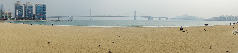 Korea-Busan-Beach-Haeundae - Todays panorama, featuring the huge bridge. It extends far to the left and right of this image.