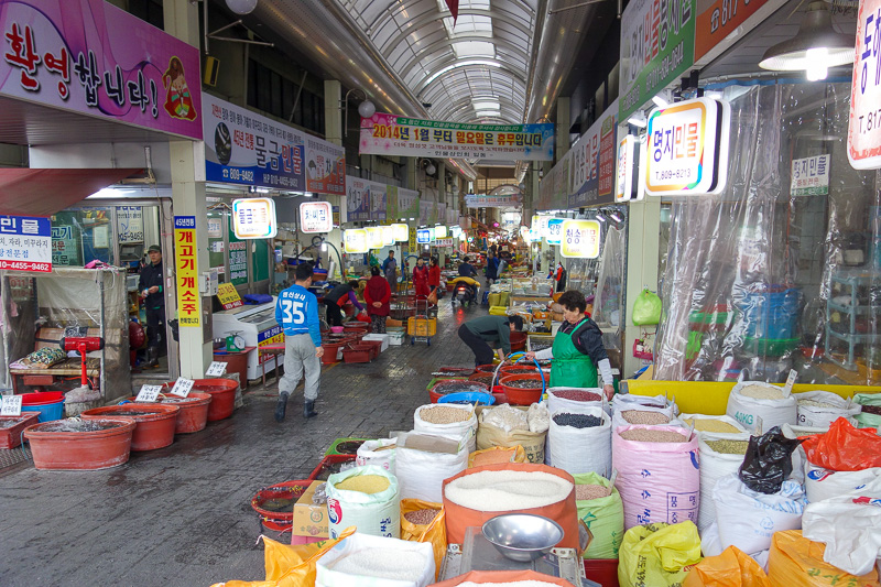Korea-Busan-Gwangju-Bus - Before I set off to the bus station, I had a walk around the local market at 7am. Its enormous.