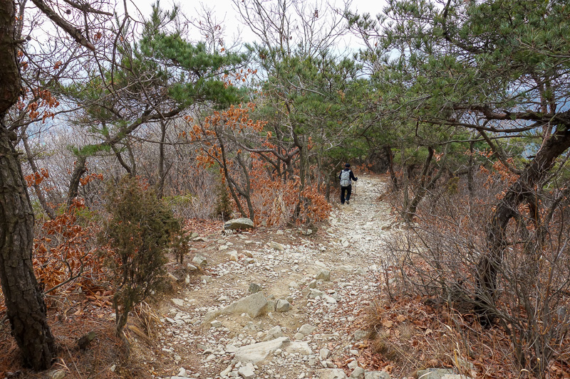 Korea-Incheon-Songdo-Hiking-Gaesan - The path down. Actually one of the nicer sections. After this it was a real scramble and I needed both hands, so had to put my camera away. I only sli