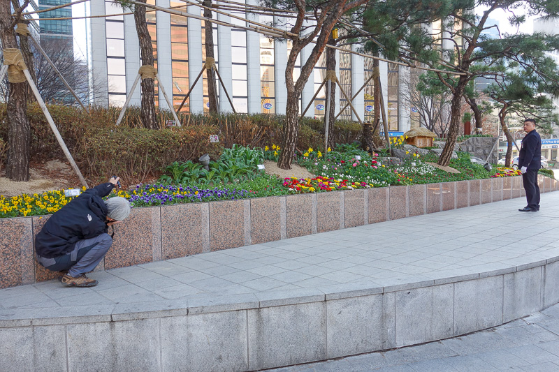 Korea-Seoul-Gangnam-Insadong-Mall - This guy is taking photos of flowers up close, with a torch for light. The security guard is telling him off for doing so. So I took a photo of the gu