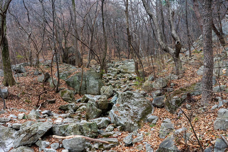 Korea-Hiking-Gyeryongsan - The path at first was rewardingly rocky. My poor shoes are wearing out fast clamouring over all this granite. Every Korean hiking trail is sharp grani