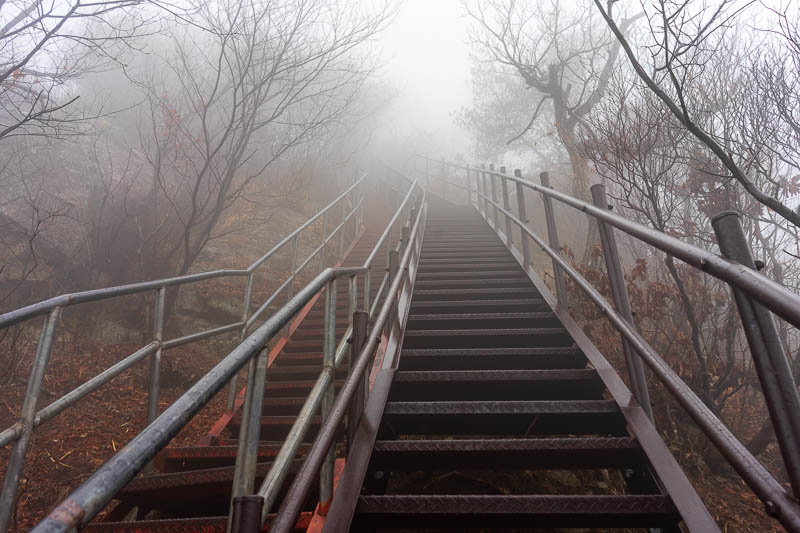 Korea-Hiking-Gyeryongsan - After a lot of ascending in the fog, the ascent got too steep and needed vertigo inducing stairs. It never rained despite constantly looking like it w