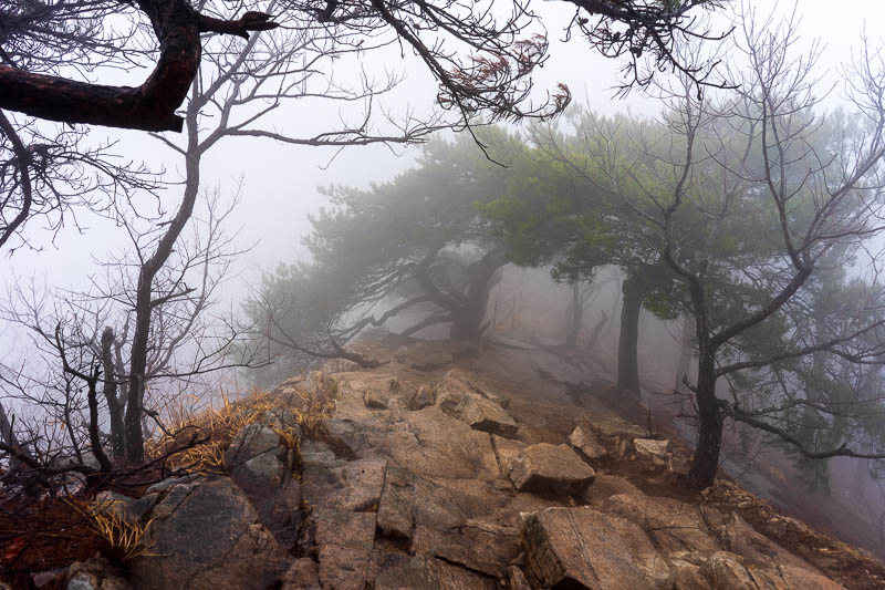 Korea-Hiking-Gyeryongsan - I enjoyed carefully going along the ridge between the peaks. It probably looked much more dangerous than it was due to the fog.