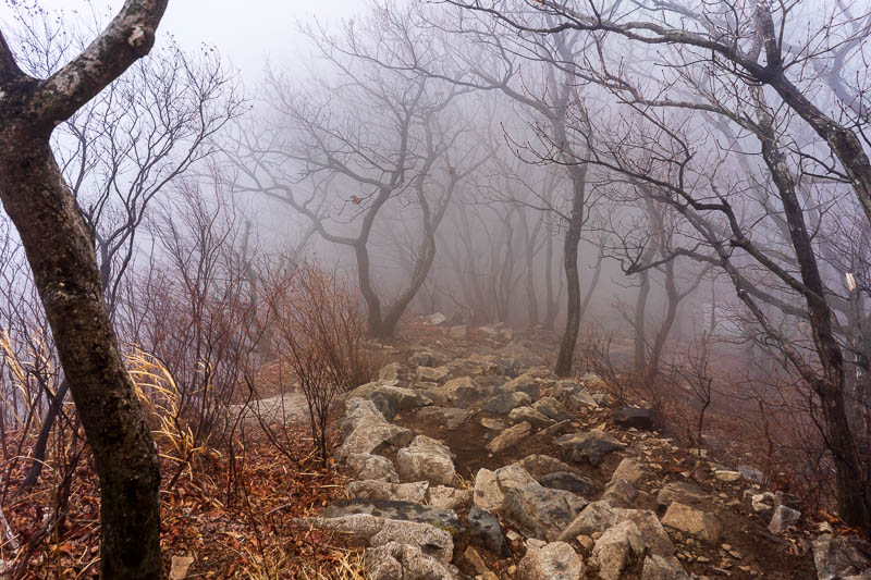 Korea-Hiking-Gyeryongsan - After appreciating the wonderful view, it was time to descend in the fog, carefully.