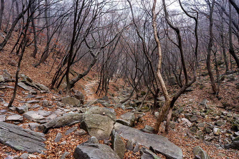 Korea-Hiking-Gyeryongsan - The path down was very nice looking without the fog.