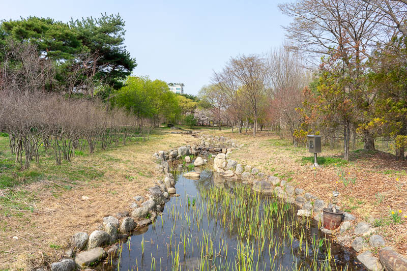 Korea-Daejeon-Expo - This was the start of the main park, split in two, I think they call it the arboretum. There was definitely an 'oak zone'.