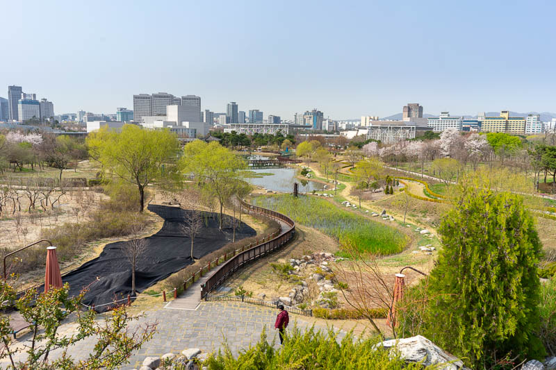 Korea-Daejeon-Expo - The park has an impressive mound to climb up and appreciate the view from. Behold, many blossoms, and a clear sky. It was very warm at one point, I wo