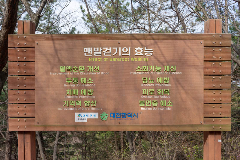 Korea-Daejeon-Hiking-Gyejoksan - So there you go, walking barefoot prevents diabetes, eliminates unwanted ghosts and apparitions.
