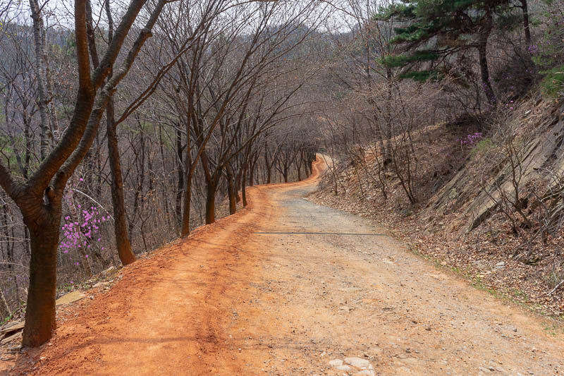 Korea-Daejeon-Hiking-Gyejoksan - All day clay