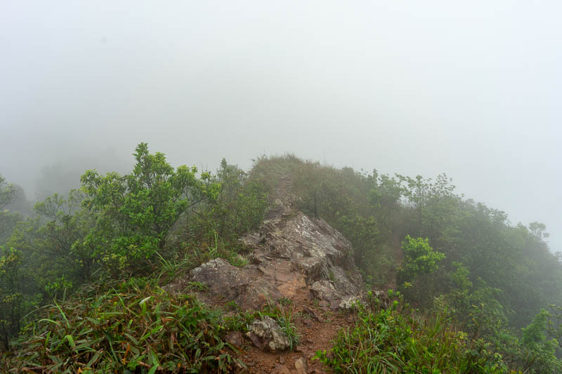 Hong Kong-Hiking-Ma On Shan - Complete fog by now.