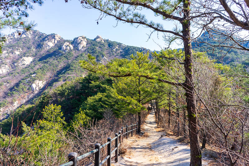 Korea-Hiking-Suraksan - Here is an easier section of the trail. I dont really understand why some parts had barriers like this despite not being dangerous, then other parts h