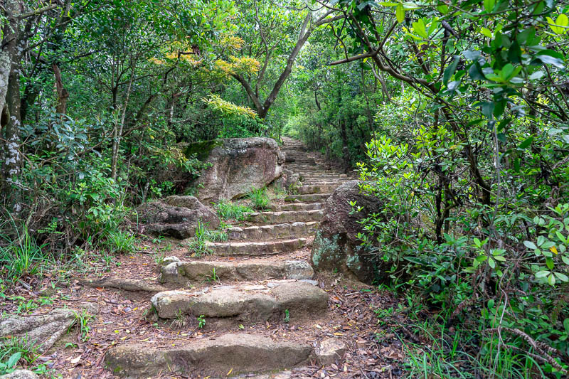 Hong Kong-Hiking-Lion Rock - The main trail was very developed, even if it did start to rain I would have no problem today.