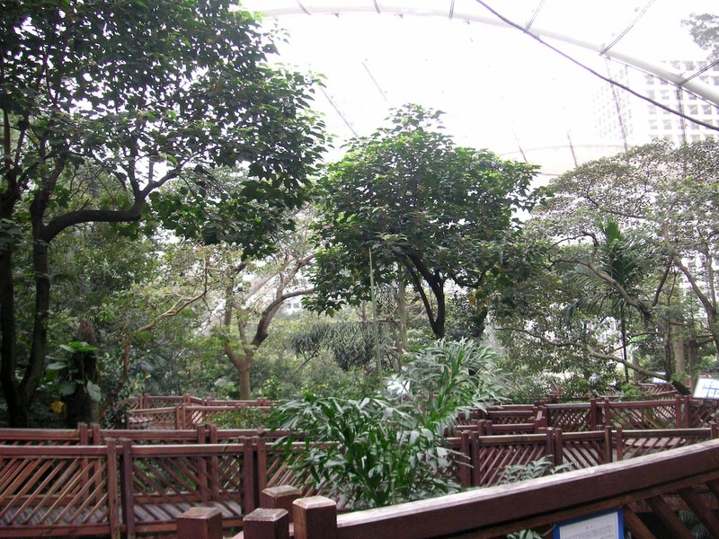 Hong Kong-Zoo-Park - Theres also a giant bird aviary in the park, with a river running through it.