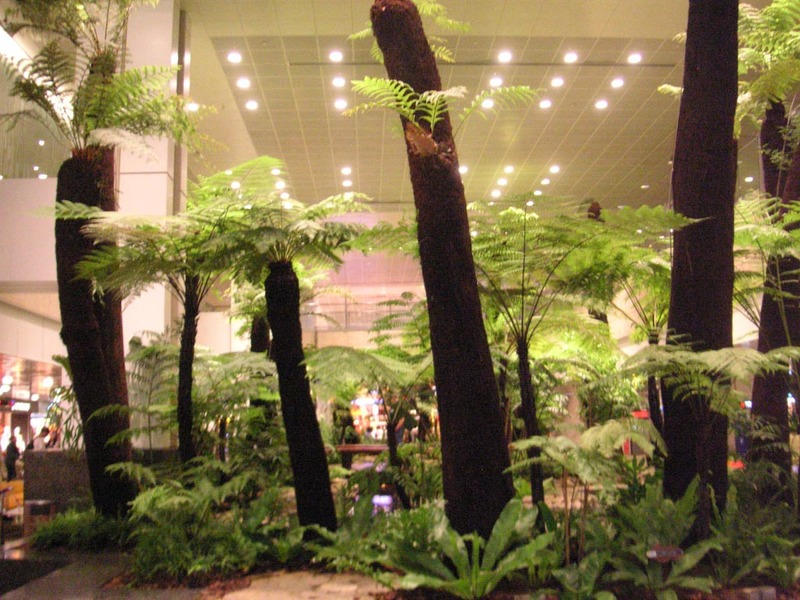 Singapore-Airport - One of the many indoor gardens.