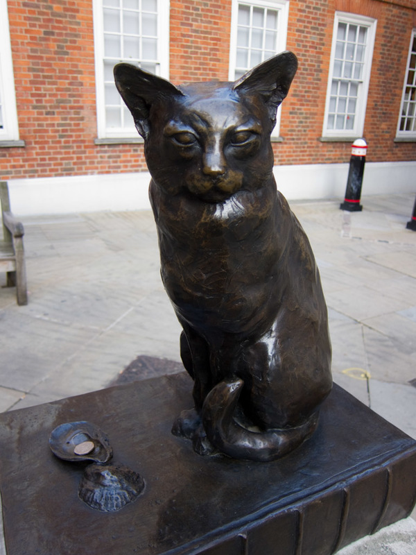 England-London-St Pauls Cathedral - This cat sat very still while I took its photo.